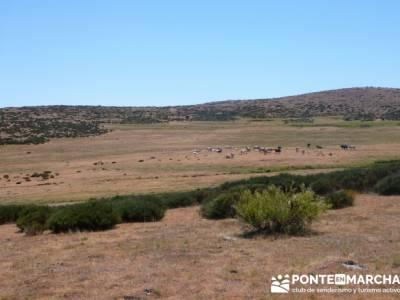 Pinar de Canencia y Mina de Plata del Indiano;asociaciones de senderismo;asociacion de senderismo